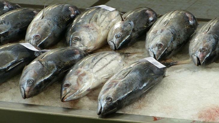 what does ahi tuna taste like